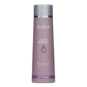 Artistique Orchid Color Shampoo 300ml