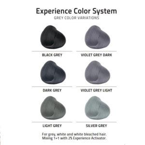 Farby do włosów w szarych odcieniach - Artistique Grey